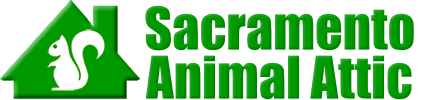 Sacramento Animal Attic
